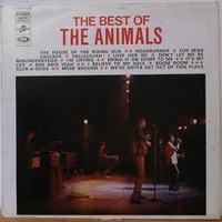 20110205_animals